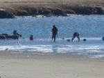 Winter Shellfishing