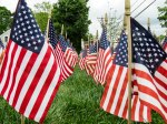 Field of Flags 002-2