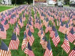 Field of Flags 003-2