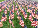 Field of Flags 004-3
