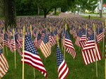 Field of Flags 006-2