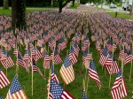 Field of Flags 007-2