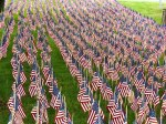 Field of Flags 013-2