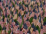 Field of Flags 021-3